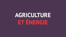 agriculture_energie.jpg
