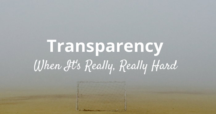 transparency_2.png